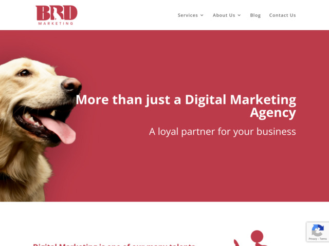 bigreddog.marketing preview image