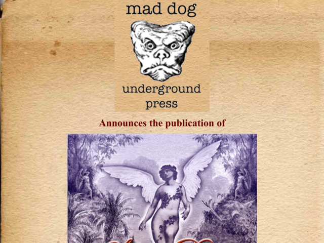maddogunderground.com preview image