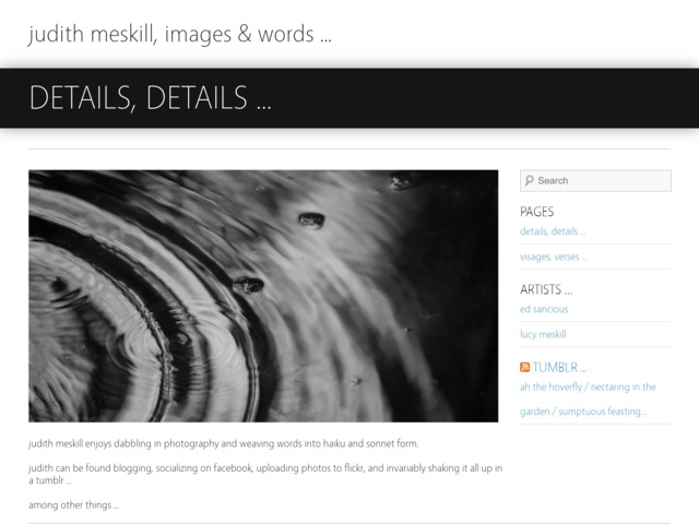 meskill.net preview image