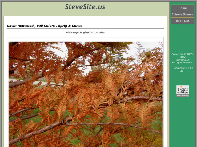 stevesite.us preview image