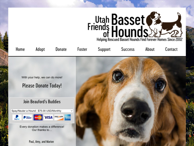 utahbassethoundrescue.com preview image