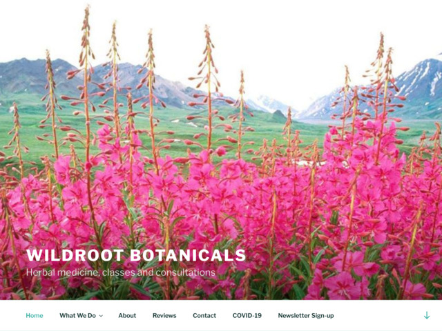 wildrootbotanicals.com preview image